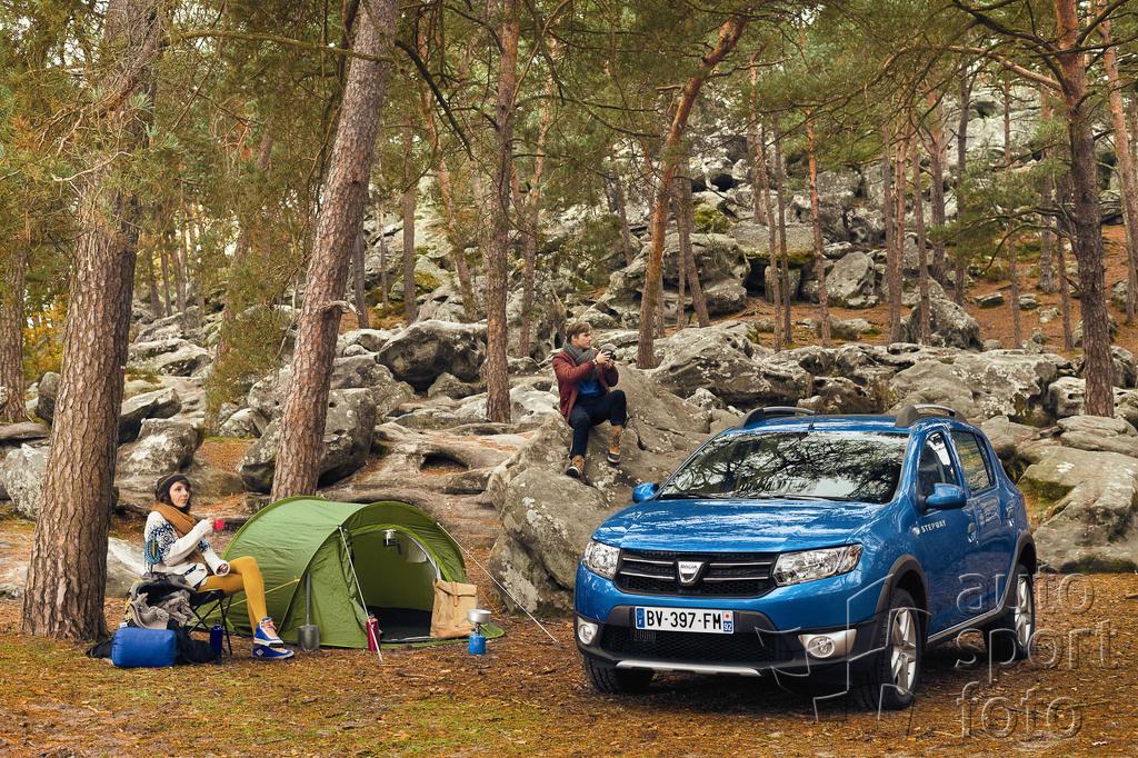 Dacia - бюджетное подразделение груп…