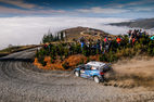 Rally Chile M-Sport sobota
